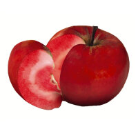 Apfel Red Love