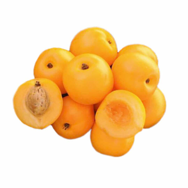 Nectacots